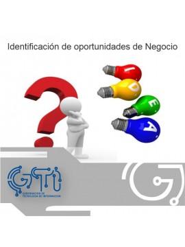 Identificación de oportunidades de Negocio